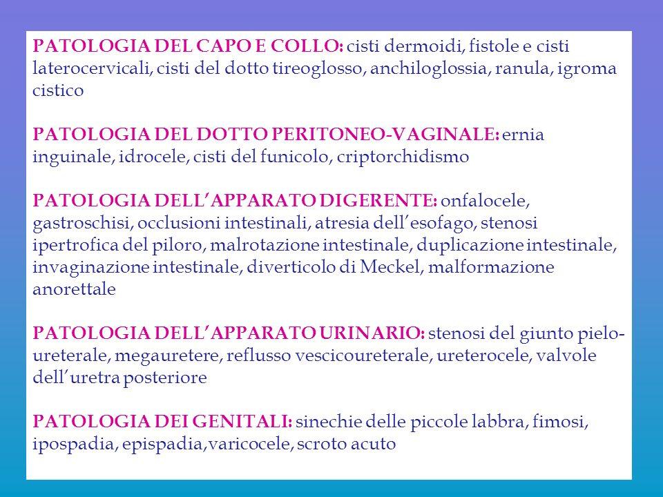 PATOLOGIA DEL CAPO E COLLO: cisti dermoidi, fistole e cisti laterocervicali, cisti del dotto tireoglosso, anchiloglossia, ranula, igroma cistico PATOL