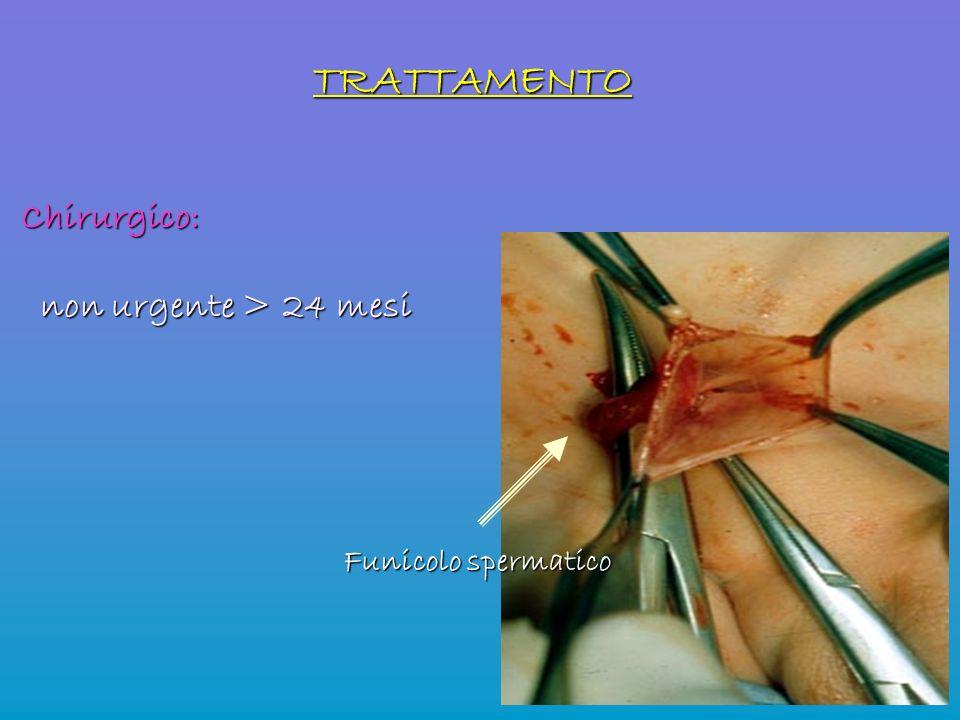TRATTAMENTO Chirurgico: non urgente > 24 mesi non urgente > 24 mesi Funicolo spermatico