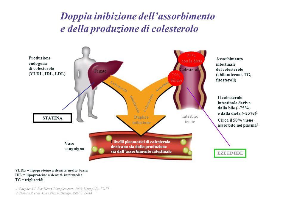 I livelli plasmatici di colesterolo derivano sia dalla produzione sia dallassorbimento intestinale Produzione endogena di colesterolo (VLDL, IDL, LDL)