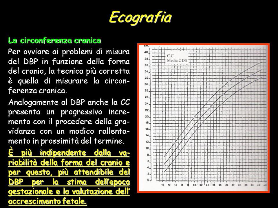 Ecografia La circonferenza cranica Per ovviare ai problemi di misura del DBP in funzione della forma del cranio, la tecnica più corretta è quella di m