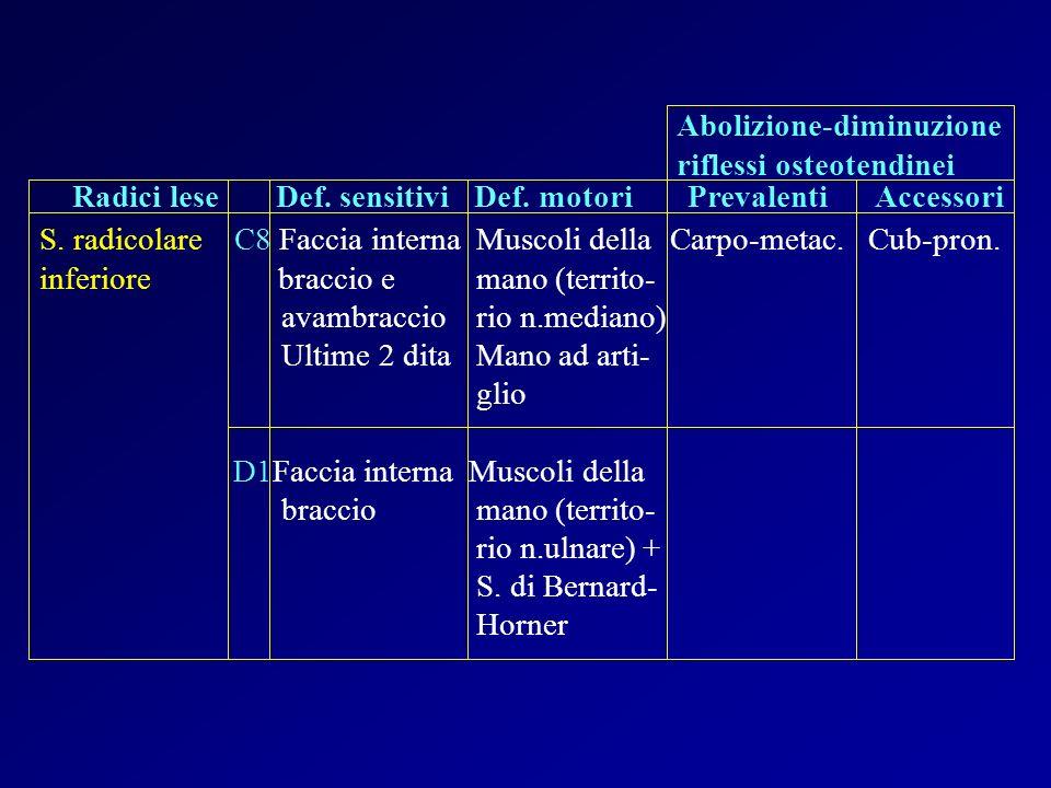 S. radicolare C8 Faccia interna Muscoli dellaCarpo-metac. Cub-pron. inferiore braccio e mano (territo- avambraccio rio n.mediano) Ultime 2 dita Mano a