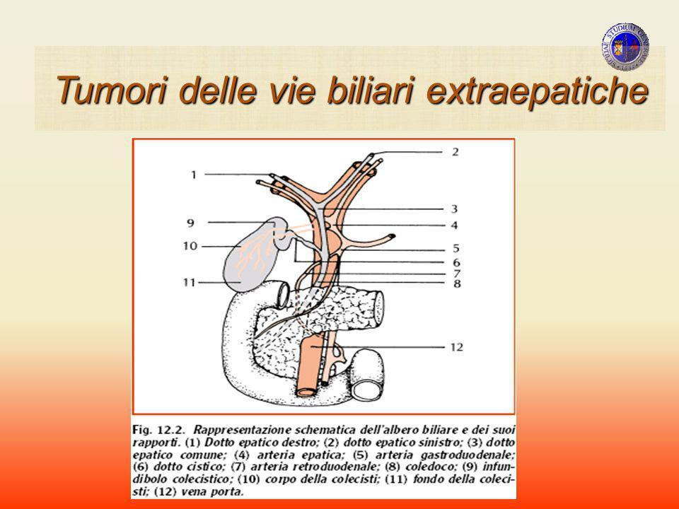 CARCINOMI FASE PRE-ITTERICA Periodo di latenza clinica ( 3-8 MESI ) SINTOMATOLOGIA ASSENTE SINTOMATOLOGIA ASPECIFICA EPISODI RARI DI COLICA BILIARE,FEBBRE, ITTERO FUGACE INCOSTANTE RIALZO DI FA, DI γ-GT Tumori della VBP