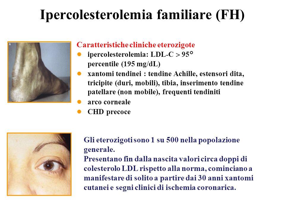 Caratteristiche cliniche eterozigote ipercolesterolemia: LDL-C 95° percentile (195 mg/dL) xantomi tendinei : tendine Achille, estensori dita, tricipit