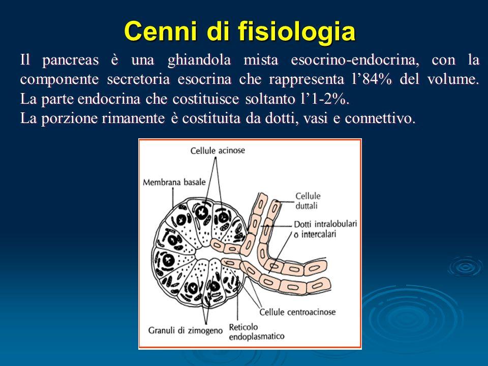 Cenni di fisiologia Il pancreas è una ghiandola mista esocrino-endocrina, con la componente secretoria esocrina che rappresenta l84% del volume.