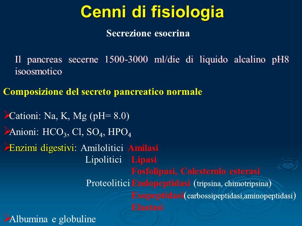 Cenni di fisiologia Il pancreas secerne 1500-3000 ml/die di liquido alcalino pH8 isoosmotico Composizione del secreto pancreatico normale Cationi: Na, K, Mg (pH= 8.0) Anioni: HCO 3, Cl, SO 4, HPO 4 Enzimi digestivi Enzimi digestivi: Amilolitici Amilasi Lipolitici Lipasi Fosfolipasi, Colesterolo esterasi Proteolitici Endopeptidasi ( tripsina, chimotripsina ) Esopeptidasi ( carbossipeptidasi,aminopeptidasi ) Elastasi Albumina e globuline Secrezione esocrina