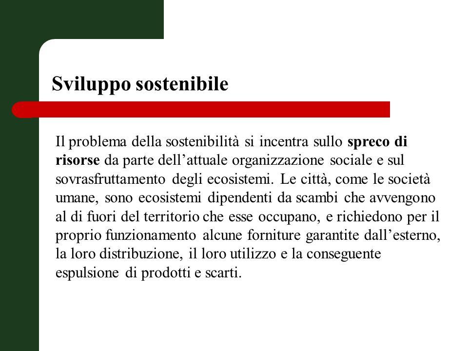 Sviluppo sostenibile Il problema della sostenibilità si incentra sullo spreco di risorse da parte dellattuale organizzazione sociale e sul sovrasfruttamento degli ecosistemi.