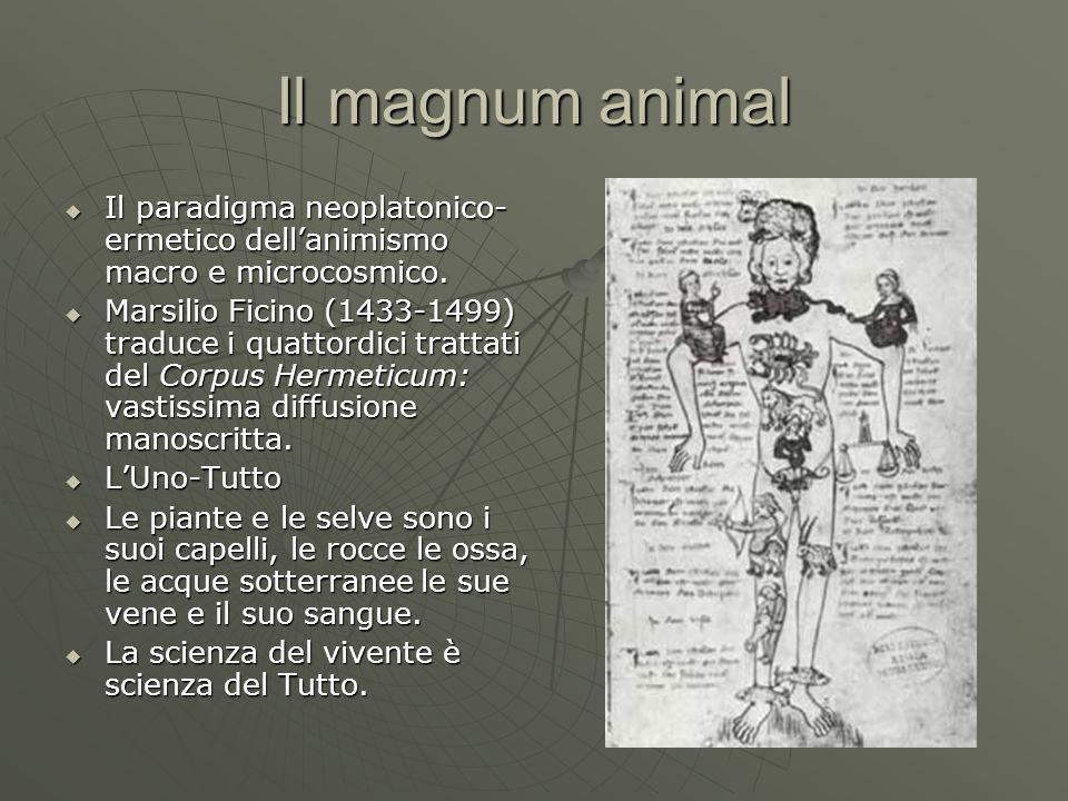 Il magnum animal Il paradigma neoplatonico- ermetico dellanimismo macro e microcosmico. Il paradigma neoplatonico- ermetico dellanimismo macro e micro