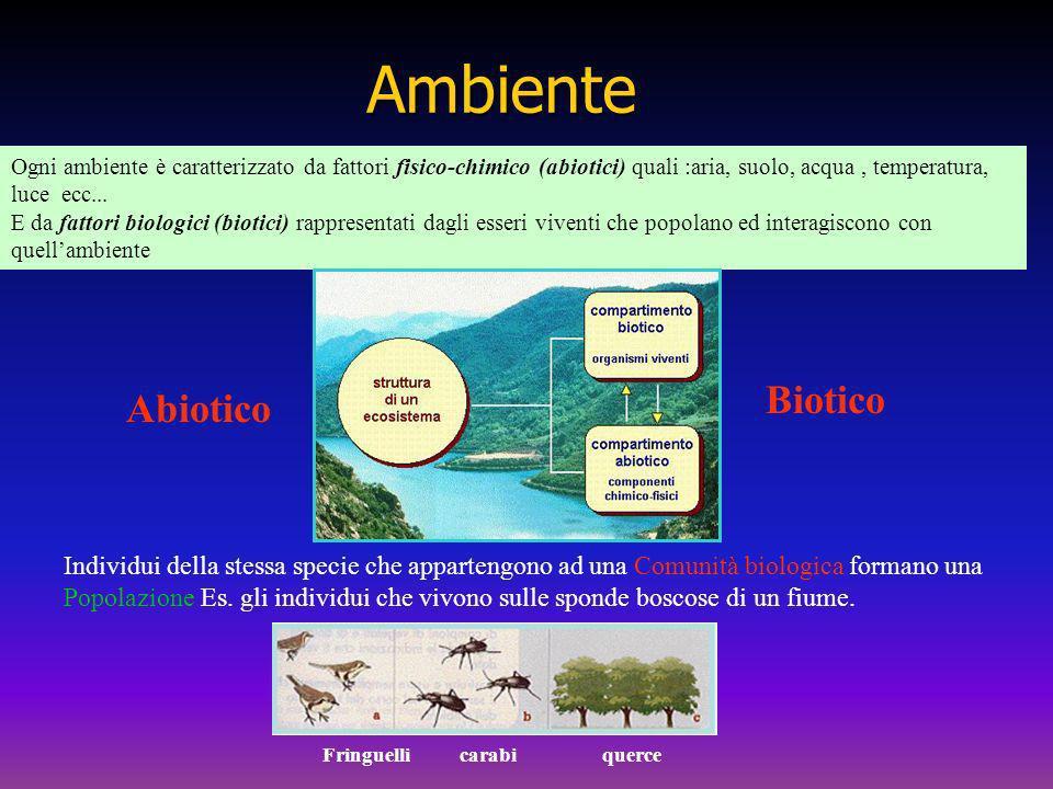 Ogni ambiente è caratterizzato da fattori fisico-chimico (abiotici) quali :aria, suolo, acqua, temperatura, luce ecc... E da fattori biologici (biotic