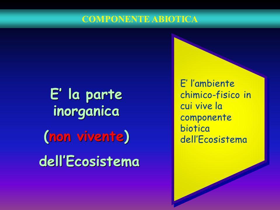 COMPONENTE ABIOTICA E la parte inorganica (non vivente) dellEcosistema dellEcosistema E lambiente chimico-fisico in cui vive la componente biotica del