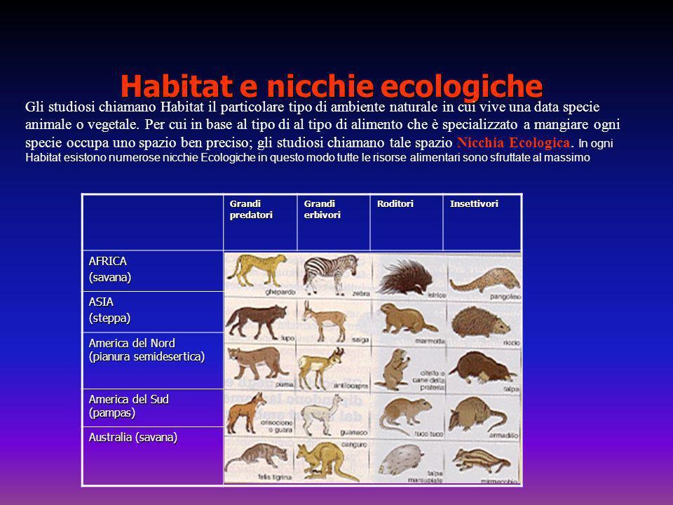 Habitat e nicchie ecologiche Gli studiosi chiamano Habitat il particolare tipo di ambiente naturale in cui vive una data specie animale o vegetale. Pe