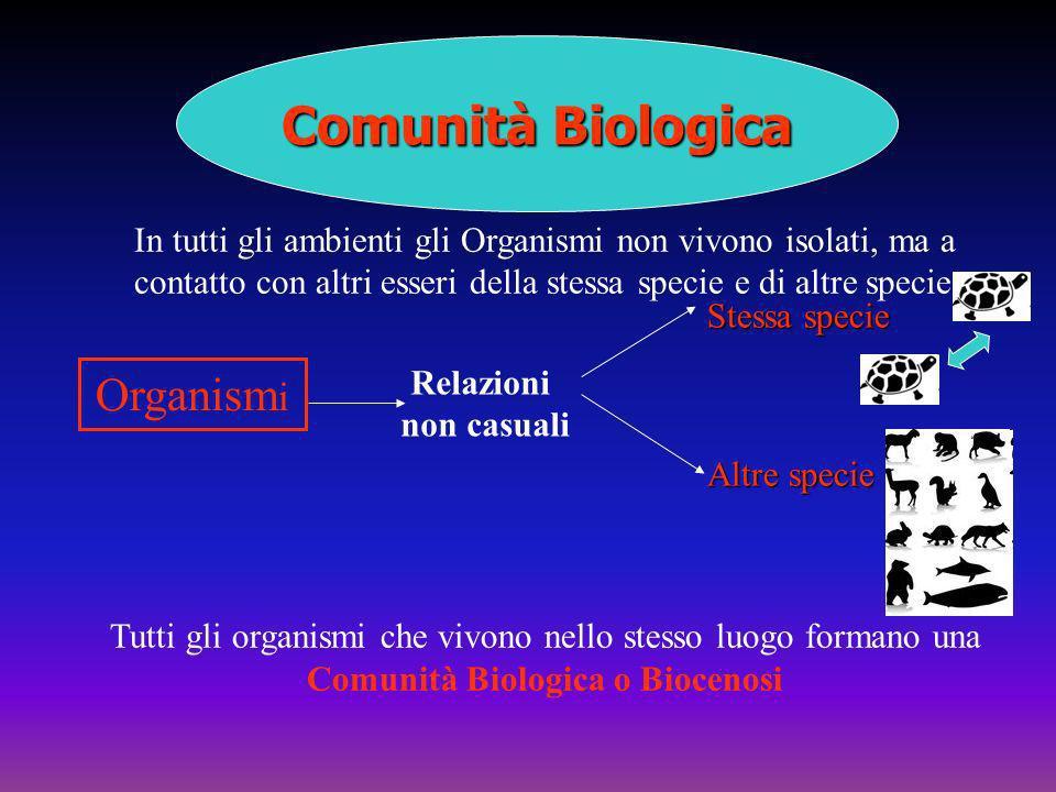 Comunità Biologica In tutti gli ambienti gli Organismi non vivono isolati, ma a contatto con altri esseri della stessa specie e di altre specie Organi