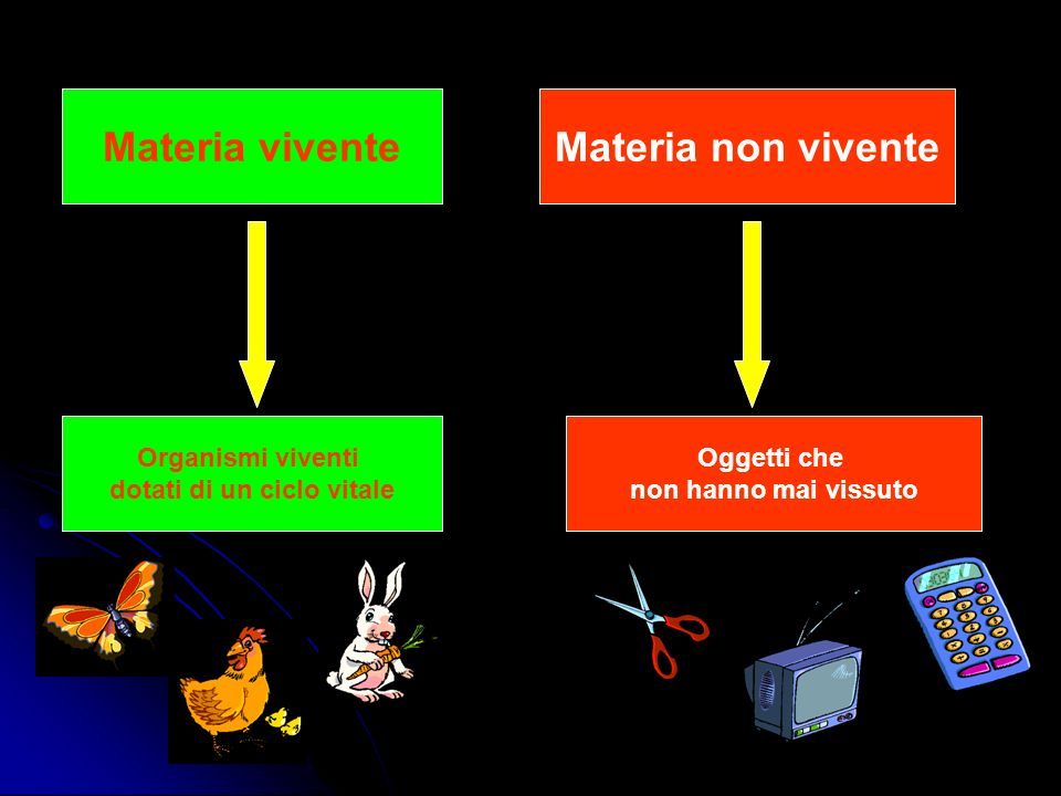 Materia Sostanze CompostiElementi Formati da atomi di natura diversiFormati da atomi tutti uguali