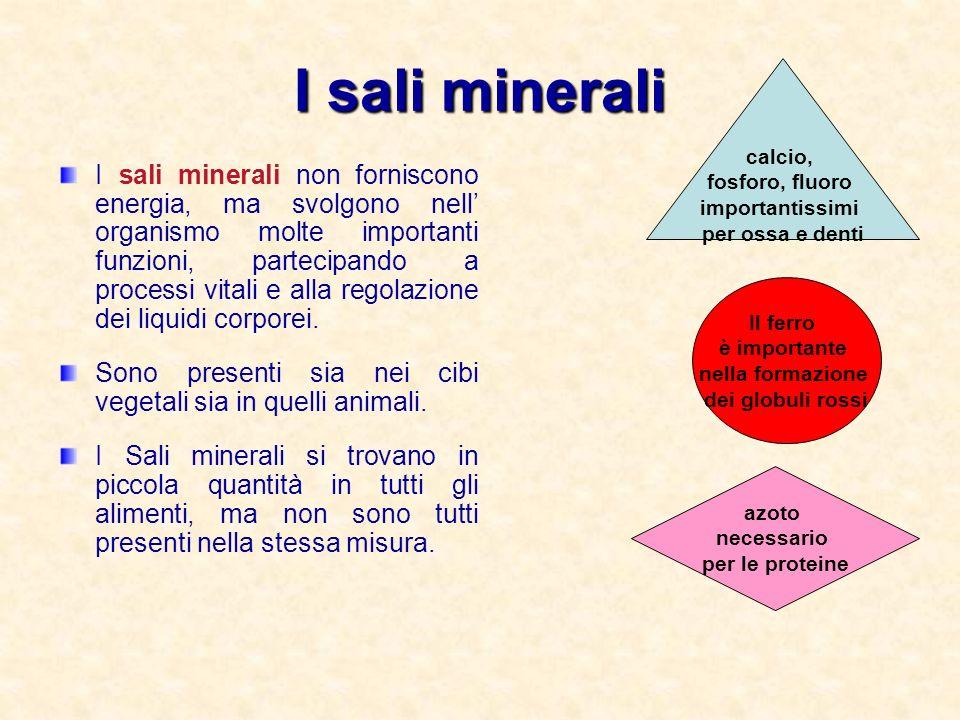 I sali minerali I sali minerali non forniscono energia, ma svolgono nell organismo molte importanti funzioni, partecipando a processi vitali e alla regolazione dei liquidi corporei.