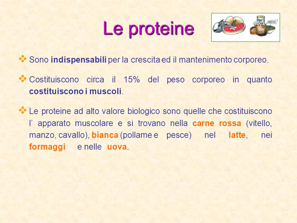 Le proteine Sono indispensabili per la crescita ed il mantenimento corporeo.