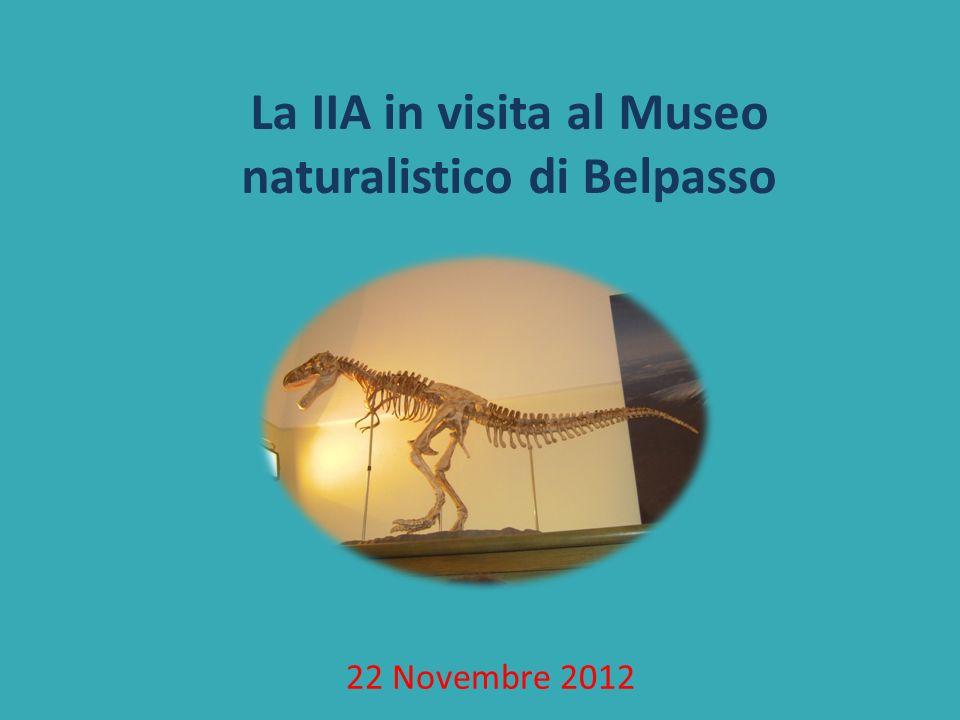La IIA in visita al Museo naturalistico di Belpasso 22 Novembre 2012