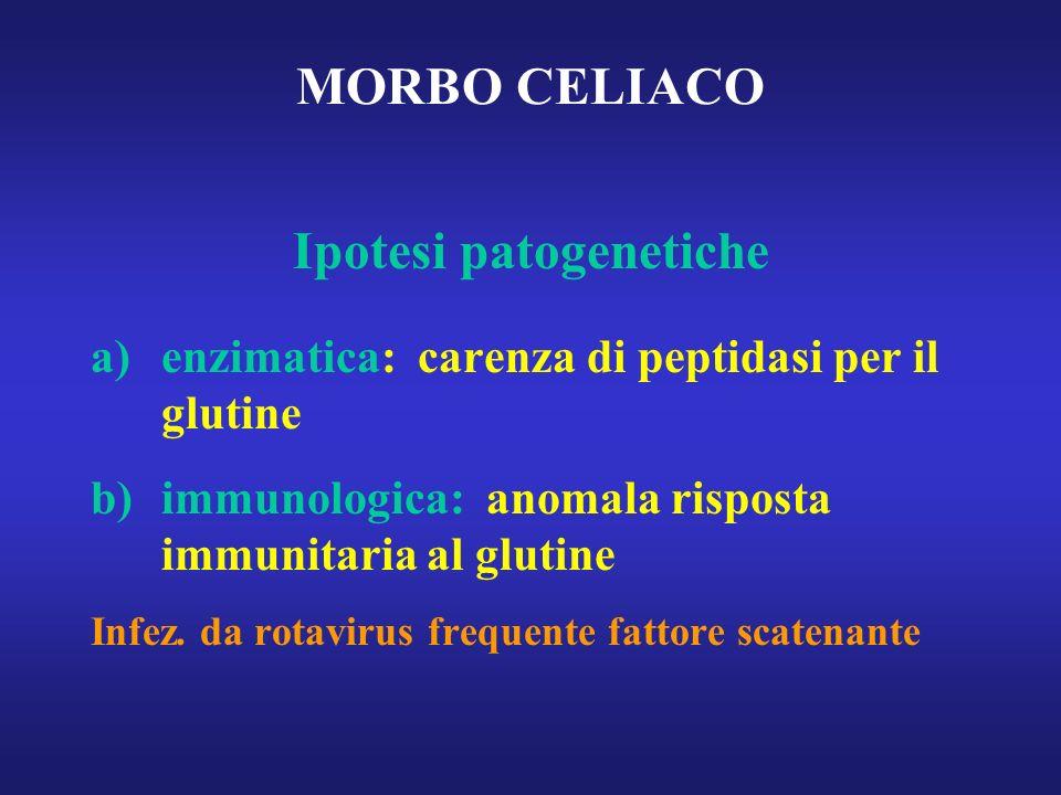 MORBO CELIACO Ipotesi patogenetiche a)enzimatica: carenza di peptidasi per il glutine b)immunologica: anomala risposta immunitaria al glutine Infez. d