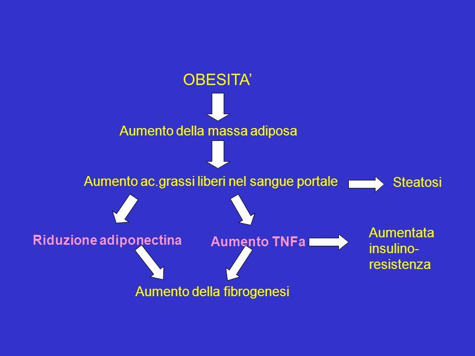 OBESITA Aumento della massa adiposa Aumento ac.grassi liberi nel sangue portale Steatosi Riduzione adiponectina Aumento TNFa Aumentata insulino- resis