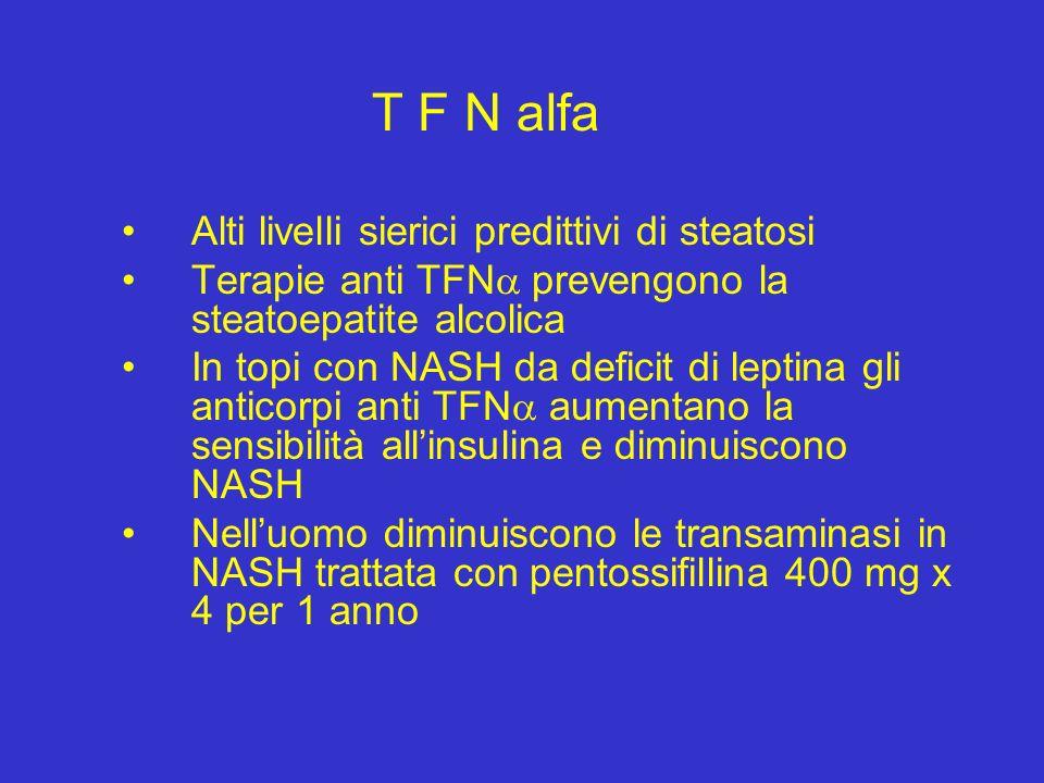 T F N alfa Alti livelli sierici predittivi di steatosi Terapie anti TFN prevengono la steatoepatite alcolica In topi con NASH da deficit di leptina gl