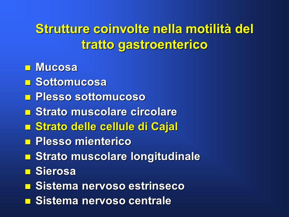 Strutture coinvolte nella motilità del tratto gastroenterico n Mucosa n Sottomucosa n Plesso sottomucoso n Strato muscolare circolare n Strato delle c