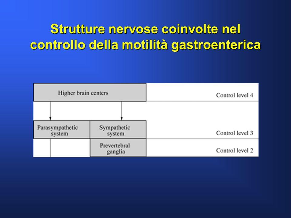 Miopatie idiopatiche Gastroenterology 2002