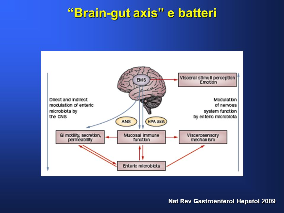 Brain-gut axis e batteri Nat Rev Gastroenterol Hepatol 2009