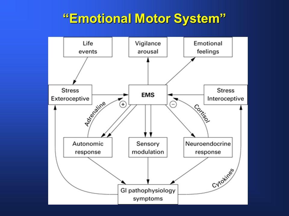Emotional Motor System