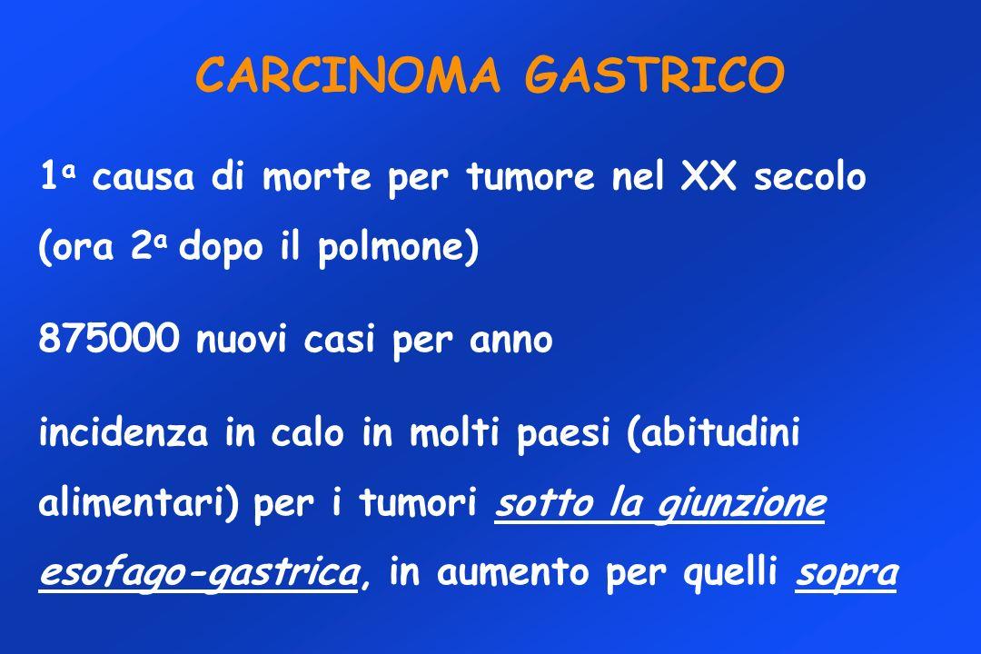 CARCINOMA GASTRICO 1 a causa di morte per tumore nel XX secolo (ora 2 a dopo il polmone) 875000 nuovi casi per anno incidenza in calo in molti paesi (