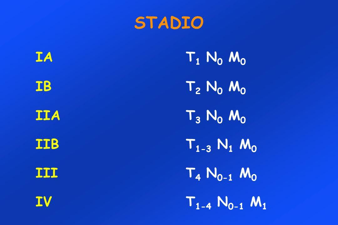 STADIO IAT 1 N 0 M 0 IBT 2 N 0 M 0 IIA T 3 N 0 M 0 IIBT 1-3 N 1 M 0 IIIT 4 N 0-1 M 0 IVT 1-4 N 0-1 M 1