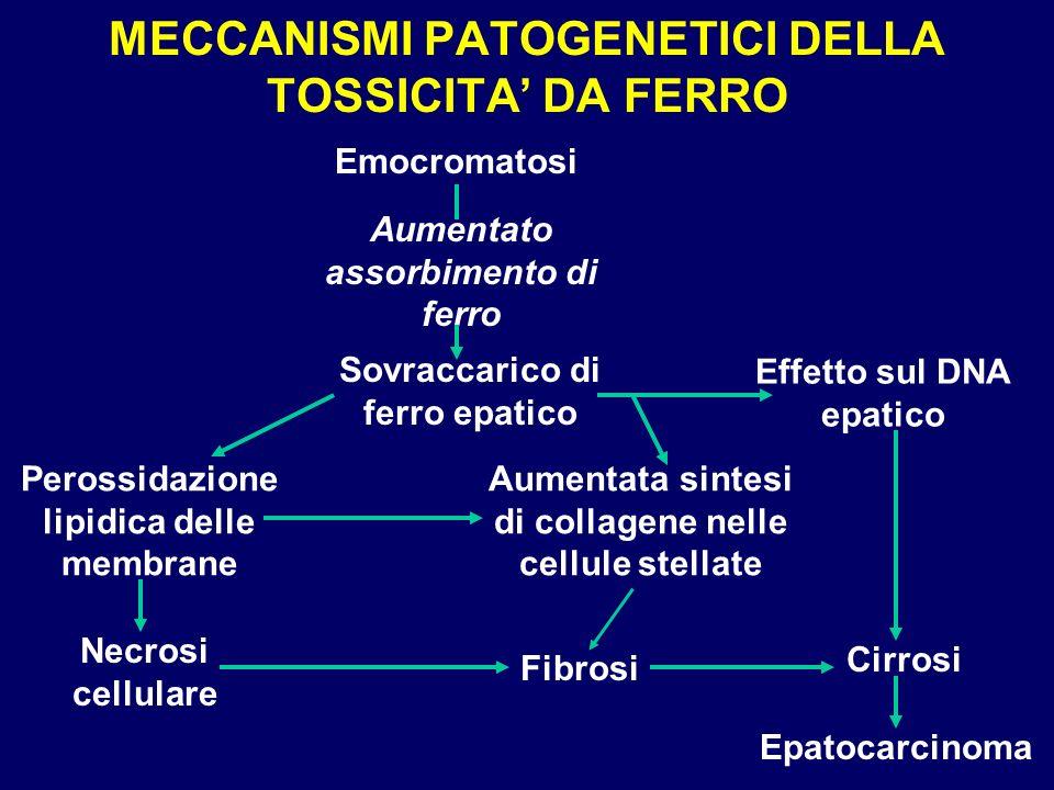 MECCANISMI PATOGENETICI DELLA TOSSICITA DA FERRO Emocromatosi Aumentato assorbimento di ferro Sovraccarico di ferro epatico Effetto sul DNA epatico Pe