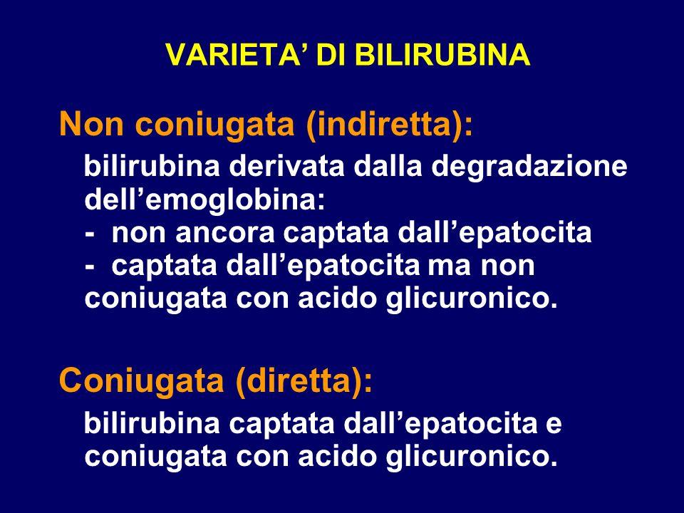 VARIETA DI BILIRUBINA Non coniugata (indiretta): bilirubina derivata dalla degradazione dellemoglobina: - non ancora captata dallepatocita - captata d