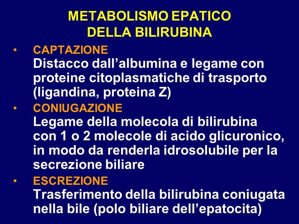 SINDROME DI GILBERT Captazione della bilirubina rallentata Coniugazione della bilirubina molto ridotta Causa frequente di iperbilirubinemia non coniugata (5-8% della popolazione) Bilirubinemia fluttuante tra 1,5 e 6 mg/dl.