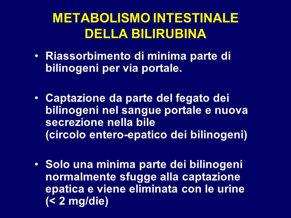 METABOLISMO INTESTINALE DELLA BILIRUBINA Ileo distale Vena porta Colon Feci Bilinogeni Deconiugazione della bilirubina (betaglicuronidasi batterica) Trasformazione in bilinogeni (enzimi batterici) Urobilinogeno fecale 50-250 mg/die Urine < 2 mg/die Bilinogeni Captazione epatica e secrezione nella bile
