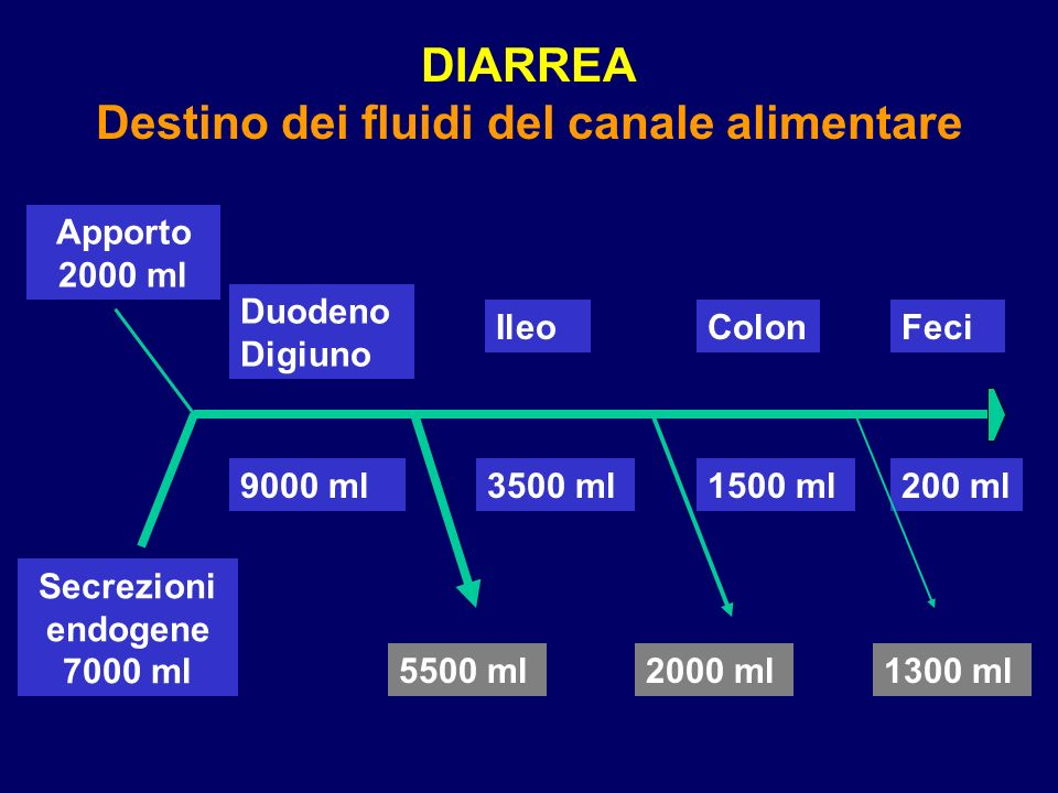 DIARREA Destino dei fluidi del canale alimentare Apporto 2000 ml Duodeno Digiuno IleoColonFeci Secrezioni endogene 7000 ml 9000 ml3500 ml1500 ml200 ml 5500 ml2000 ml1300 ml