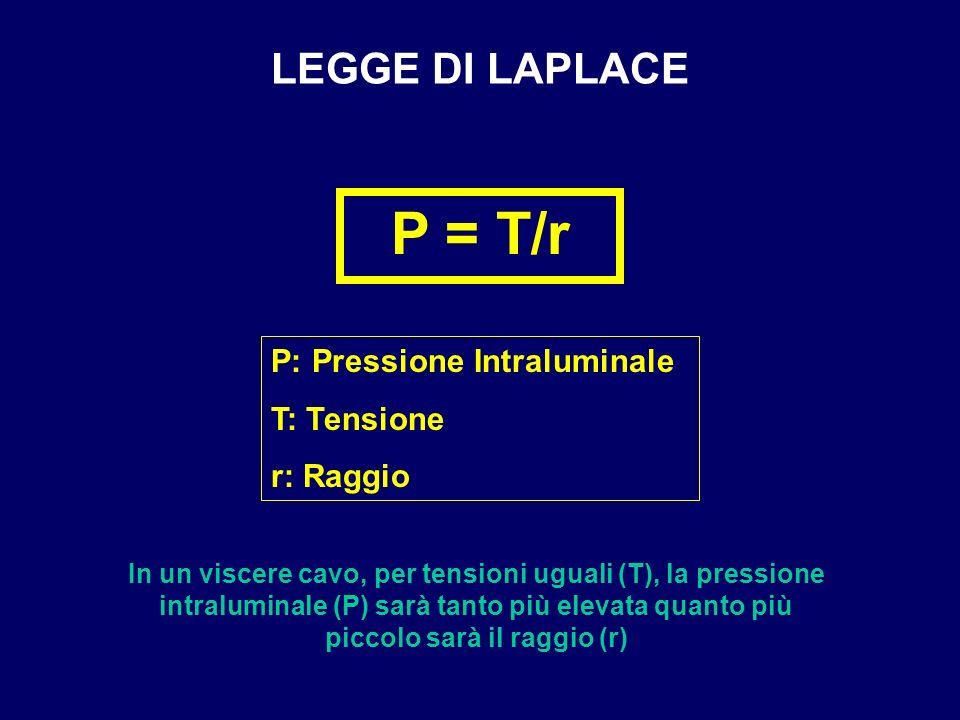 LEGGE DI LAPLACE P = T/r P: Pressione Intraluminale T: Tensione r: Raggio In un viscere cavo, per tensioni uguali (T), la pressione intraluminale (P)
