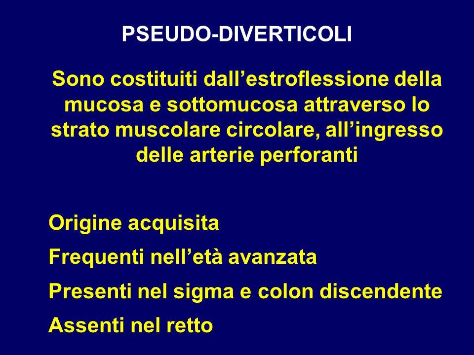 PSEUDO-DIVERTICOLI Sono costituiti dallestroflessione della mucosa e sottomucosa attraverso lo strato muscolare circolare, allingresso delle arterie p