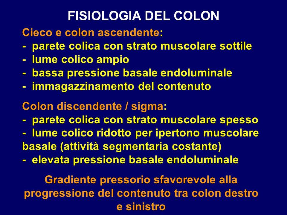 FISIOLOGIA DEL COLON Cieco e colon ascendente: - parete colica con strato muscolare sottile - lume colico ampio - bassa pressione basale endoluminale