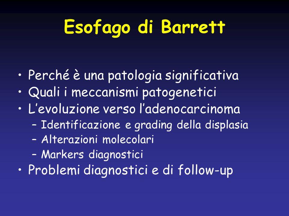 Esofago di Barrett Perché è una patologia significativa Quali i meccanismi patogenetici Levoluzione verso ladenocarcinoma –Identificazione e grading d