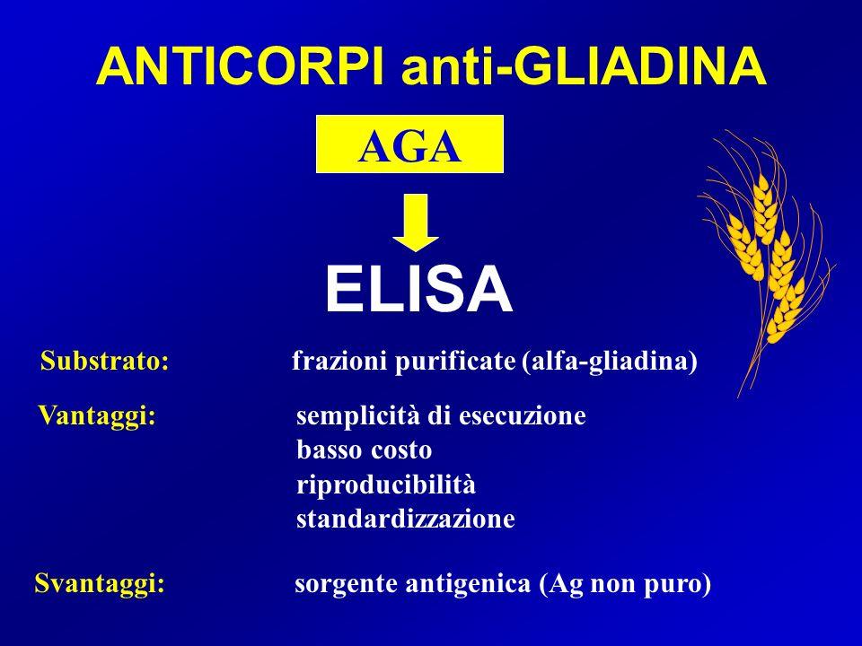 ANTICORPI anti-GLIADINA ELISA AGA Vantaggi:semplicità di esecuzione basso costo riproducibilità standardizzazione Svantaggi: sorgente antigenica (Ag non puro) Substrato: frazioni purificate (alfa-gliadina)