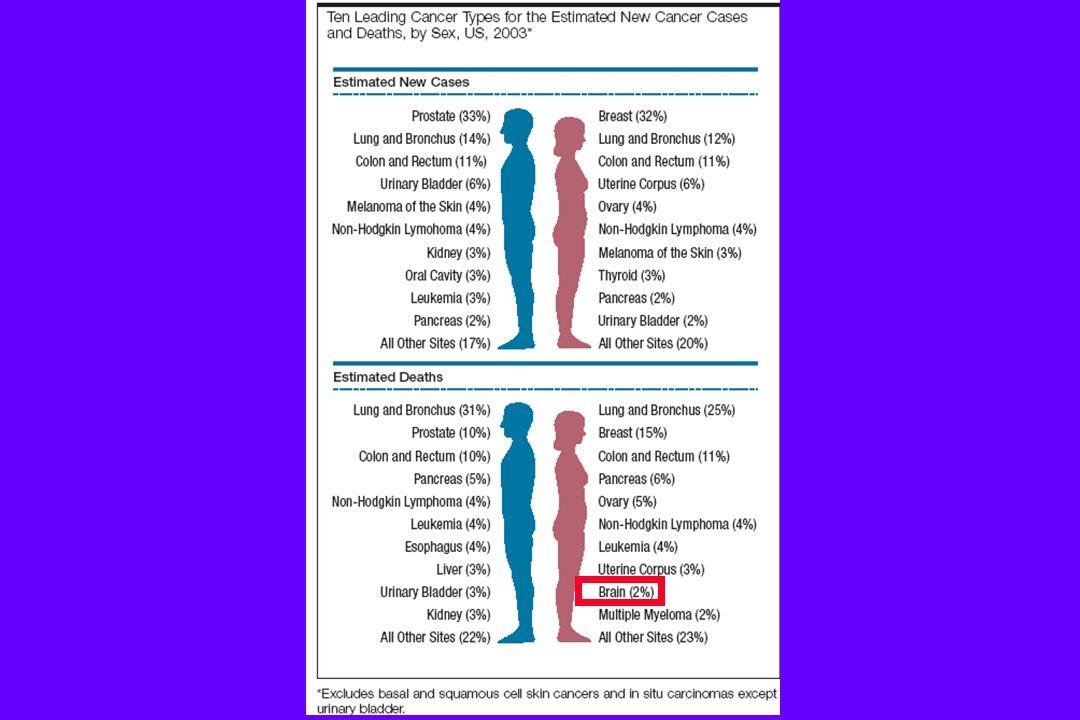 OBBIETTIVI : diagnosi istologica (!!!!!!!!!!!!!!!) rimozione della neoplasia più estesa possibile (debulking) = miglioramento della sintomatologia neurologica per riduzione effetto massa, idrocefalo, edema Preservazione o recupero delle migliori condizioni neurologiche possibili acquisizione di tessuto per miglior definizione della prognosi acquisizione di materiale per ricerca CHIRURGIA