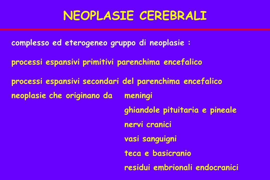 complesso ed eterogeneo gruppo di neoplasie : processi espansivi primitivi parenchima encefalico processi espansivi secondari del parenchima encefalico neoplasie che originano da meningi ghiandole pituitaria e pineale nervi cranici vasi sanguigni teca e basicranio residui embrionali endocranici NEOPLASIE CEREBRALI