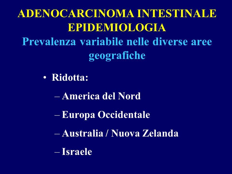 ADENOCARCINOMA INTESTINALE EPIDEMIOLOGIA Prevalenza variabile nelle diverse aree geografiche Ridotta: –America del Nord –Europa Occidentale –Australia