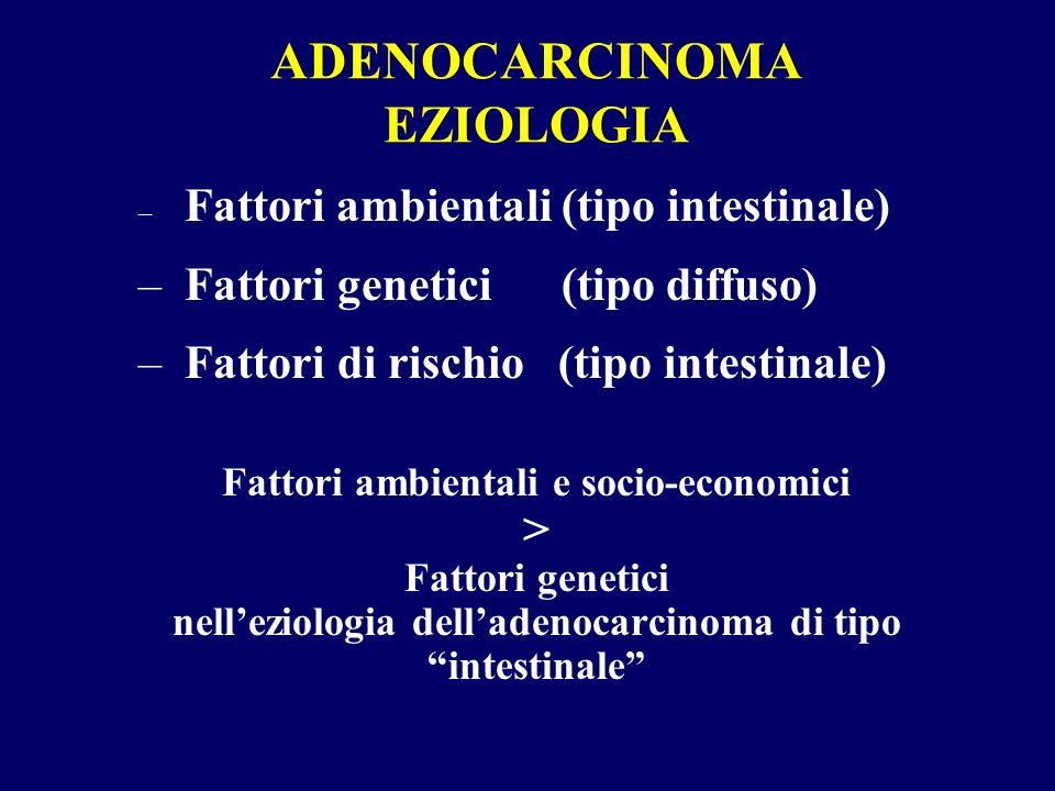 ADENOCARCINOMA EZIOLOGIA – Fattori ambientali (tipo intestinale) – Fattori genetici (tipo diffuso) – Fattori di rischio (tipo intestinale) Fattori amb