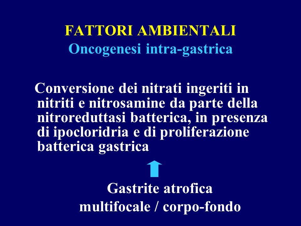 FATTORI AMBIENTALI Oncogenesi intra-gastrica Conversione dei nitrati ingeriti in nitriti e nitrosamine da parte della nitroreduttasi batterica, in pre