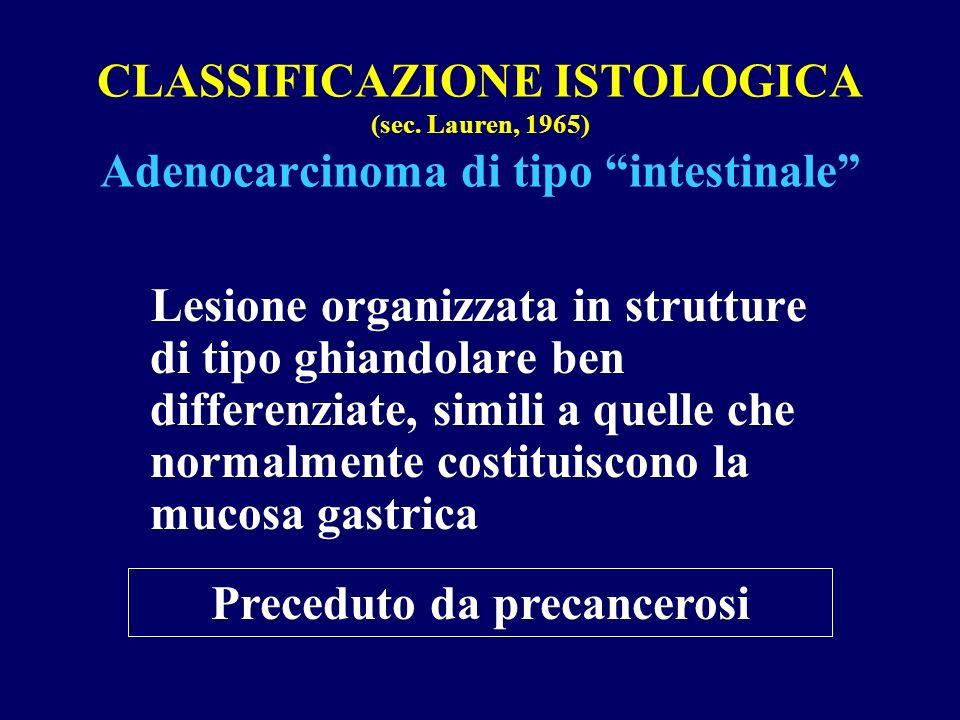 CLASSIFICAZIONE ISTOLOGICA (sec. Lauren, 1965) Adenocarcinoma di tipo intestinale Lesione organizzata in strutture di tipo ghiandolare ben differenzia