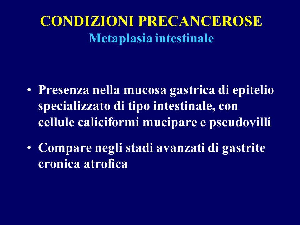 CONDIZIONI PRECANCEROSE Metaplasia intestinale Presenza nella mucosa gastrica di epitelio specializzato di tipo intestinale, con cellule caliciformi m