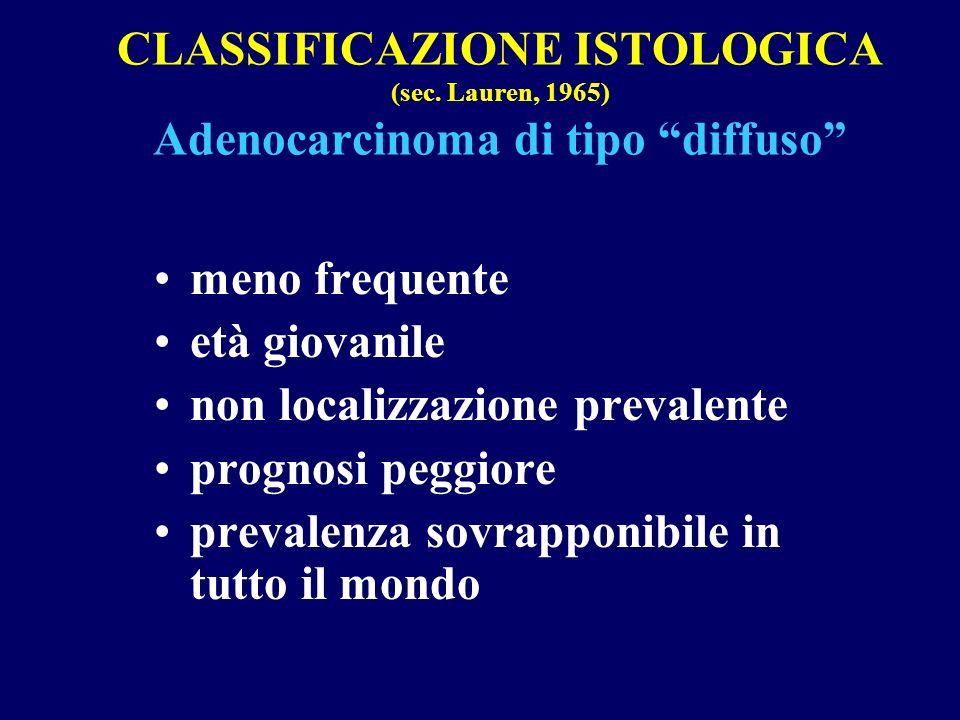 CLASSIFICAZIONE ISTOLOGICA (sec. Lauren, 1965) Adenocarcinoma di tipo diffuso meno frequente età giovanile non localizzazione prevalente prognosi pegg
