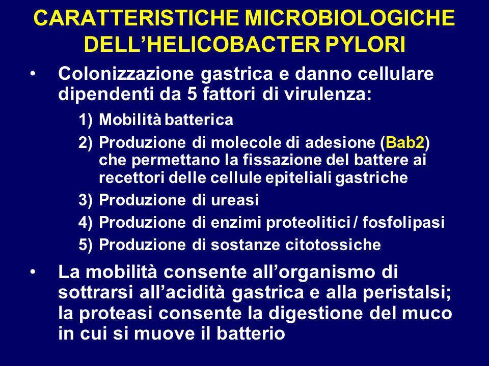 CARATTERISTICHE MICROBIOLOGICHE DELLHELICOBACTER PYLORI Colonizzazione gastrica e danno cellulare dipendenti da 5 fattori di virulenza: 1)Mobilità batterica 2)Produzione di molecole di adesione (Bab2) che permettano la fissazione del battere ai recettori delle cellule epiteliali gastriche 3)Produzione di ureasi 4)Produzione di enzimi proteolitici / fosfolipasi 5)Produzione di sostanze citotossiche La mobilità consente allorganismo di sottrarsi allacidità gastrica e alla peristalsi; la proteasi consente la digestione del muco in cui si muove il batterio