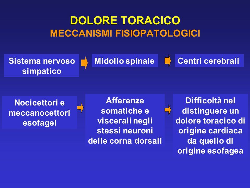 DOLORE TORACICO MECCANISMI FISIOPATOLOGICI Sistema nervoso simpatico Midollo spinaleCentri cerebrali Nocicettori e meccanocettori esofagei Afferenze s