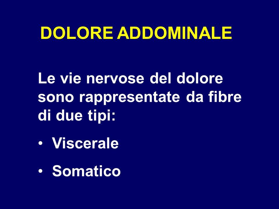 DOLORE ADDOMINALE Le vie nervose del dolore sono rappresentate da fibre di due tipi: Viscerale Somatico