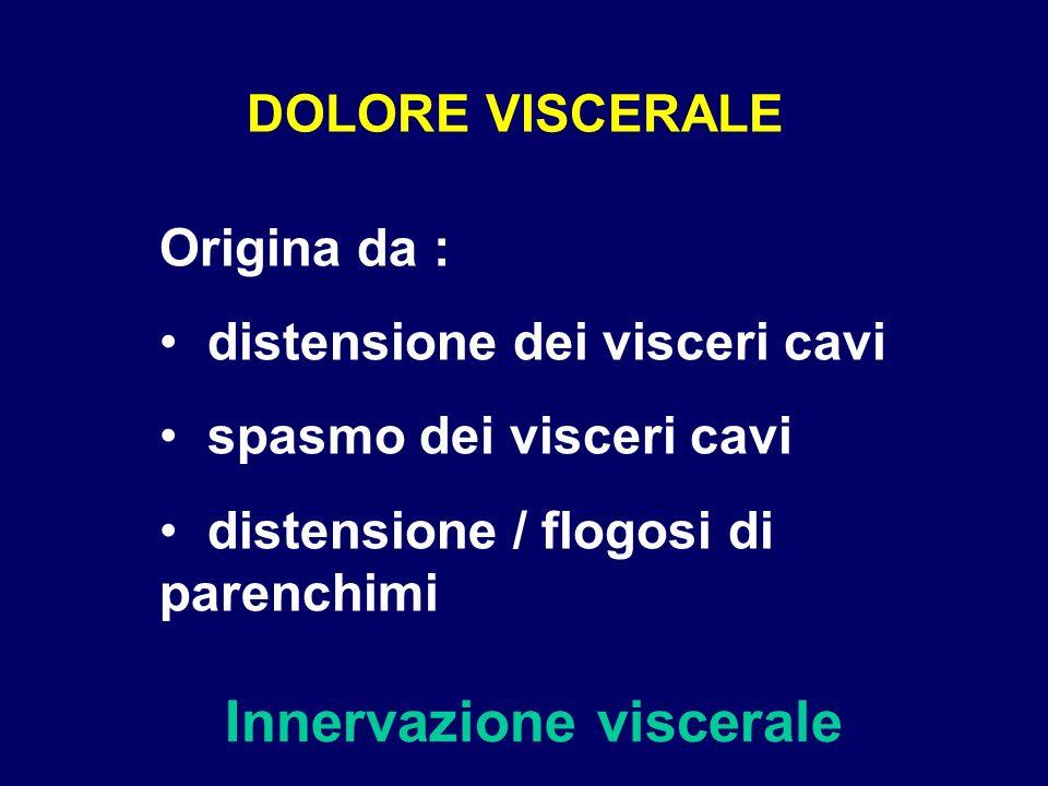 DOLORE VISCERALE Innervazione viscerale Origina da : distensione dei visceri cavi spasmo dei visceri cavi distensione / flogosi di parenchimi